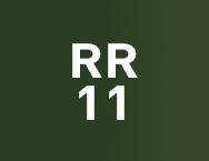 Цвет RR 11