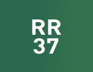 Цвет RR 37